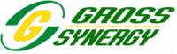 Gross Synergy Sdn Bhd